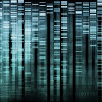 genome-web